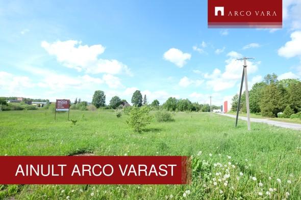 For rent  - land Planeedi, Viljandi linn, Viljandi maakond